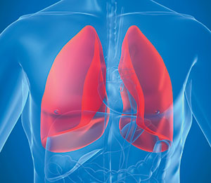 lungs – correct breathing techniques for lifting weighs