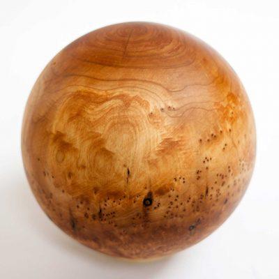 premium beginner taichi ball